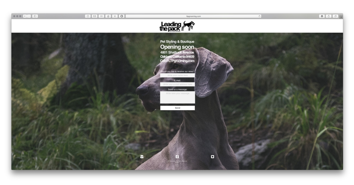 LTPGROOMING WEBSITE